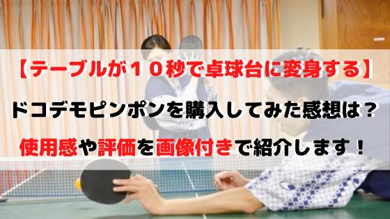 ラングスジャパンのドコデモピンポン購入レビュー!感想や評価も紹介!